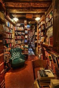 beautiful-hobbit-home-library